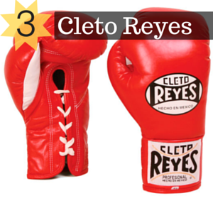 picture of cleto reyes boxing gloves