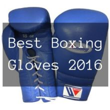 Beste Boxer Weltrangliste