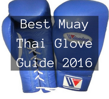 Best Boxing Gloves Guide Compared (Updated 2017)