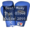 best-boxing-glove-guide